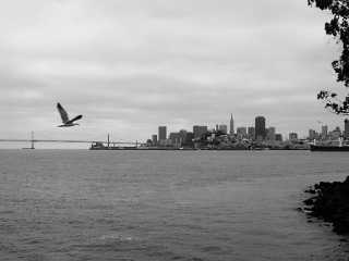 San Francisco from Alcatraz.