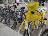 Yellow Bike #1